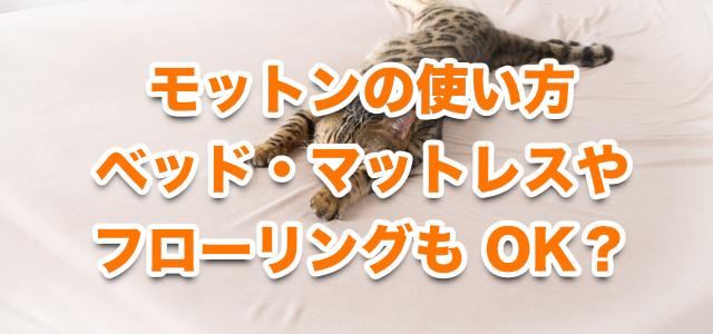 モットンの使い方【ベッドの注意点!マットレスの上でもOK?】